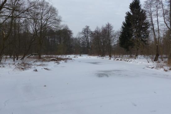 Jeziorka na wysokości ul. Mostowej, Konstancin-Jeziorna